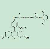 Fluorescein-PEG-NHS